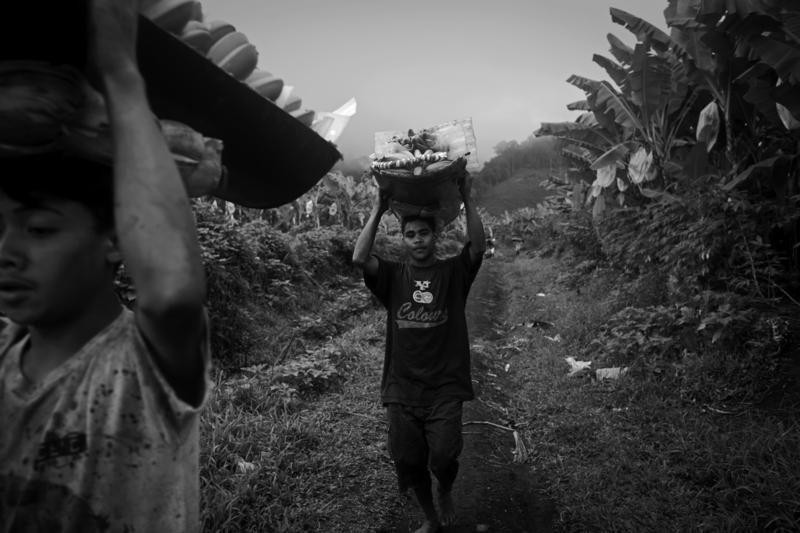 BANANA PLANTATION WORKERS
