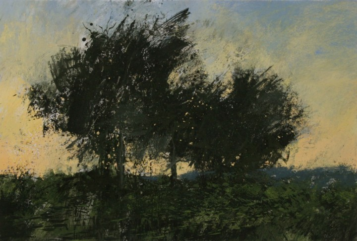 Perry - Three Trees at Sunset. Fontainebleau Forest