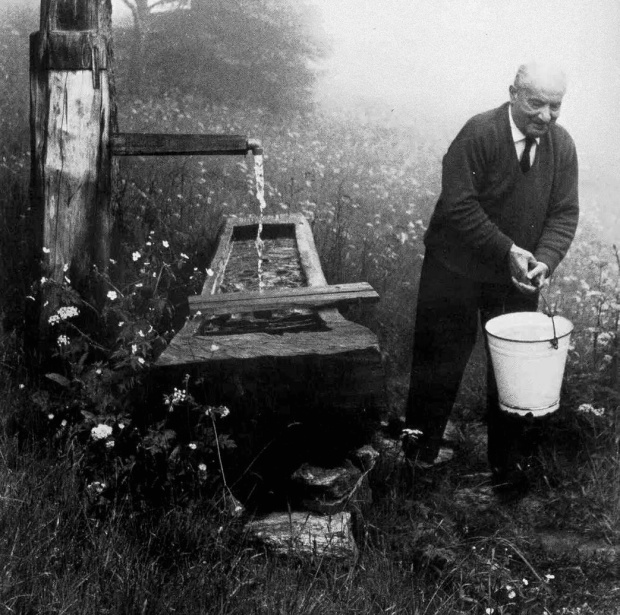 Heidegger at spring Gelassenheit