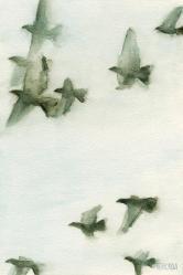 Beverly Brown - A Flock Of Pigeons 2 (2011).jpg